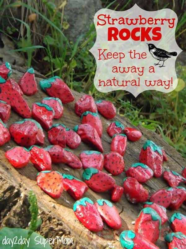 rock-stone-garden-decor-11