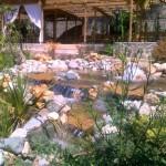 Süs Havuzu Tasarımları 7