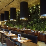 Kafe Dekorasyon 1