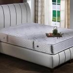 Beyaz Yatak ve Baza Modeli 2016