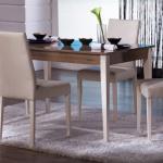 Kahverengi Krem Bellona Mutfak Masa ve Sandalye Takımı