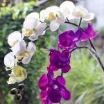 Mor Beyaz dekoratif yapay çiçek modeli